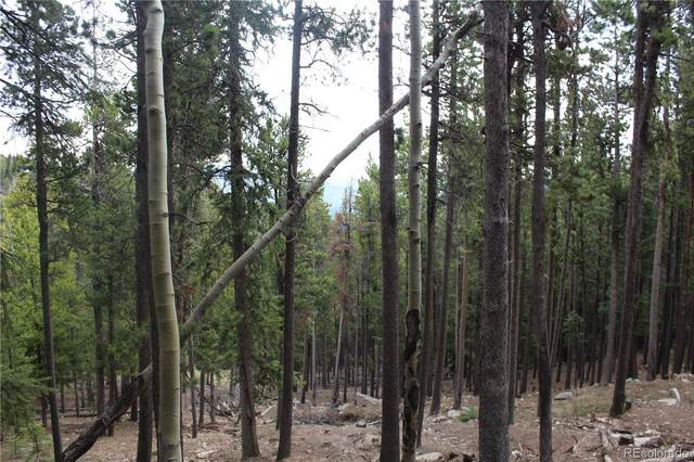 1 Lodgepole Drive, Evergreen, CO 80439 (MLS #3835736) :: 8z Real Estate
