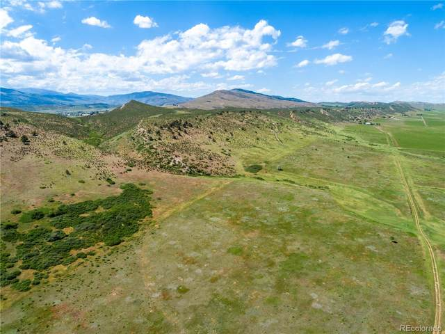 4151 Wilderland Way, Loveland, CO 80538 (#3980830) :: Portenga Properties - LIV Sotheby's International Realty