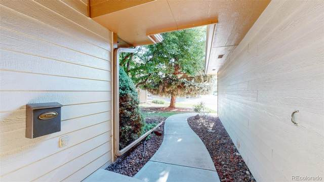 1100 Live Oak Court, Fort Collins, CO 80525 (MLS #4072433) :: Kittle Real Estate