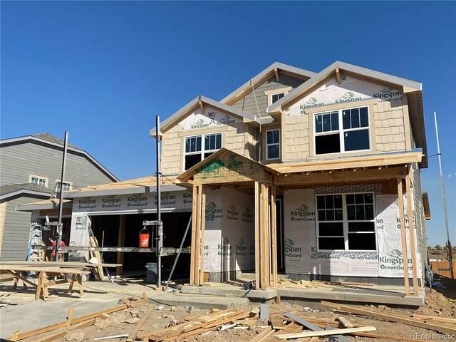 16058 Saint Paul Street, Thornton, CO 80602 (MLS #4112419) :: Find Colorado Real Estate