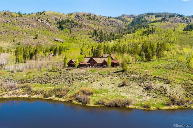 17850 County Road 16, Oak Creek, CO 80467 (#4269000) :: Mile High Luxury Real Estate