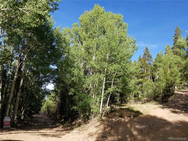South Spring Gulch Road, Idaho Springs, CO 80452 (MLS #4379429) :: The Sam Biller Home Team