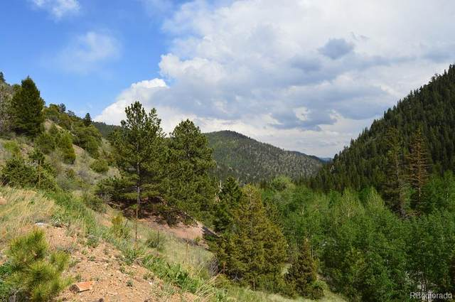 1835-07-4-03-008, Idaho Springs, CO 80452 (MLS #4469459) :: Bliss Realty Group