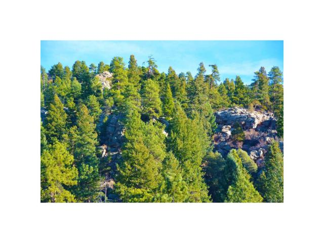 Calfee Gulch Road, Conifer, CO 80433 (MLS #4621699) :: 8z Real Estate