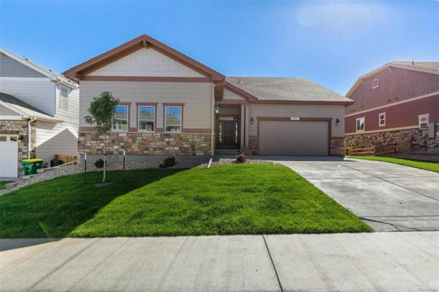 404 Sage Grouse Circle, Castle Rock, CO 80109 (#4964177) :: The DeGrood Team
