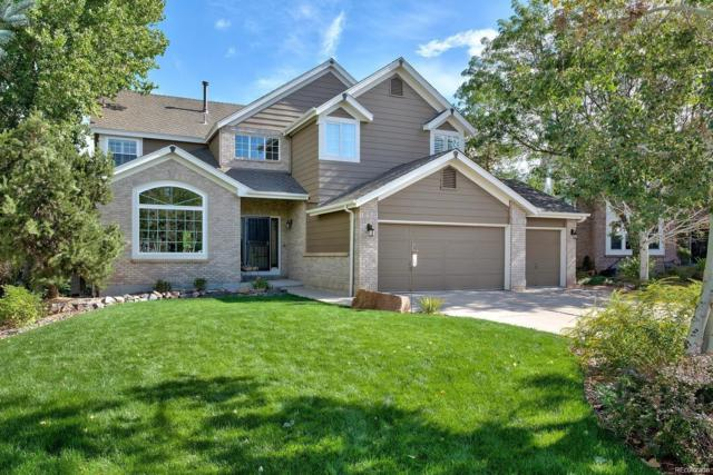 8175 Lone Oak Court, Lone Tree, CO 80124 (#5159869) :: The Heyl Group at Keller Williams