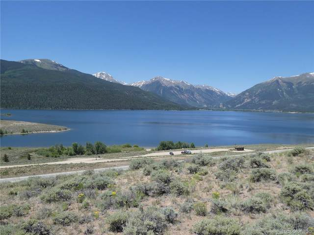 6292 County Road 10, Twin Lakes, CO 81251 (#5177152) :: The DeGrood Team