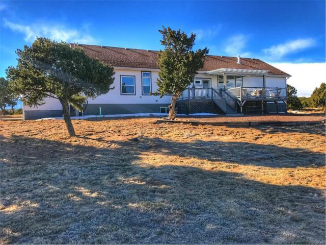 91 Bear Trail, Walsenburg, CO 81089 (MLS #5204601) :: 8z Real Estate