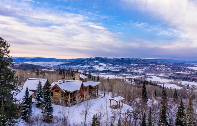 33650 County Road 38, Steamboat Springs, CO 80487 (#5376617) :: The Heyl Group at Keller Williams