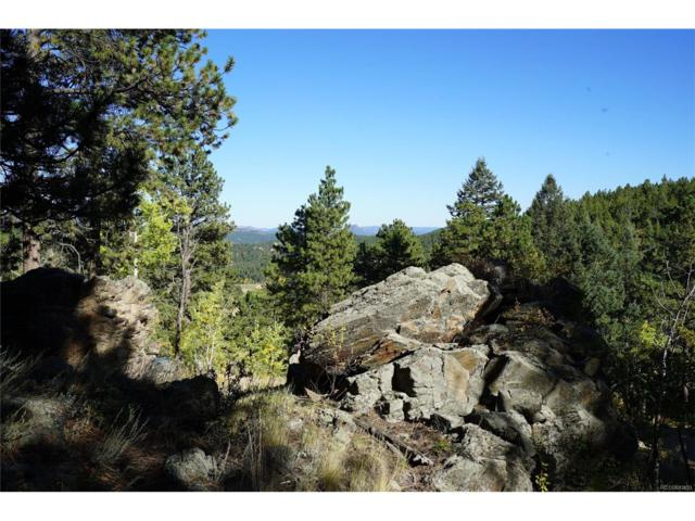 0 Delwood Drive, Bailey, CO 80421 (MLS #5738543) :: 8z Real Estate
