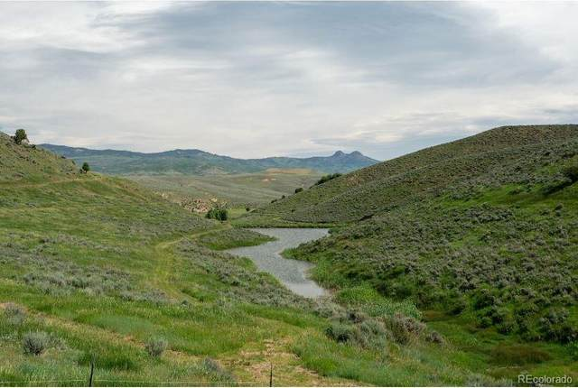 - Tbd Rock Springs Lane, Hayden, CO 81639 (#5970767) :: Bring Home Denver with Keller Williams Downtown Realty LLC