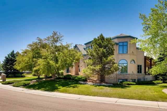 26 Red Tail Drive, Highlands Ranch, CO 80126 (#5981696) :: Bring Home Denver with Keller Williams Downtown Realty LLC