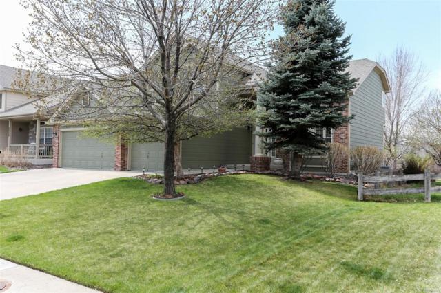 22322 Quail Run Way, Parker, CO 80138 (#6019921) :: Wisdom Real Estate