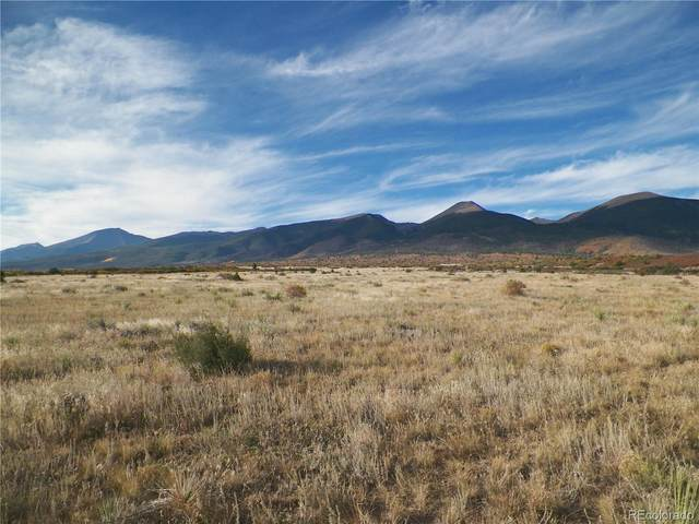 798 Running Bear, Cotopaxi, CO 81223 (#6235496) :: Portenga Properties - LIV Sotheby's International Realty