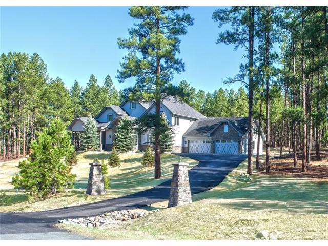10525 Wild Fox Place, Franktown, CO 80116 (MLS #6893997) :: 8z Real Estate