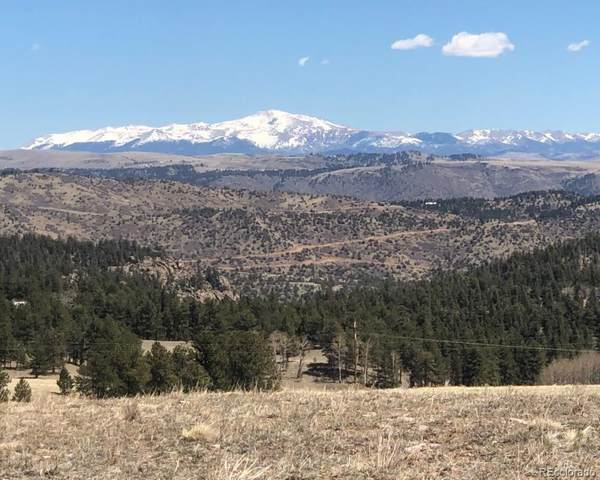 20288 Cty Rd 2, Canon City, CO 81212 (MLS #6982726) :: Wheelhouse Realty