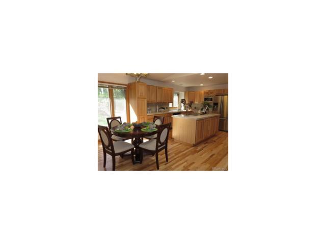 8874 Rudd Road, Evergreen, CO 80439 (MLS #7140213) :: 8z Real Estate