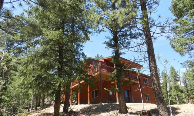 1592 S Pine Drive, Bailey, CO 80421 (#7205793) :: The Peak Properties Group