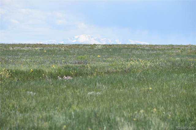 0000000 County 169 Road, Matheson, CO 80830 (MLS #7303511) :: 8z Real Estate