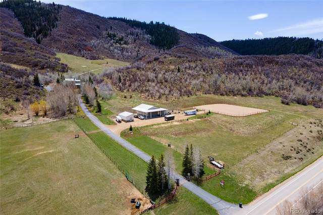 51400 County Road 129, Steamboat Springs, CO 80487 (#7499776) :: Wisdom Real Estate