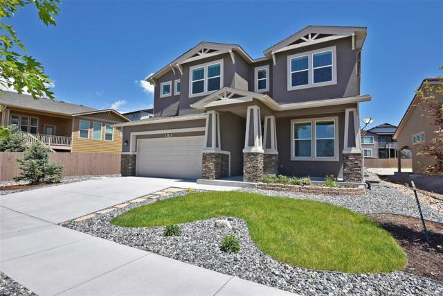 4118 Notch Trail, Colorado Springs, CO 80924 (#7578375) :: Ben Kinney Real Estate Team