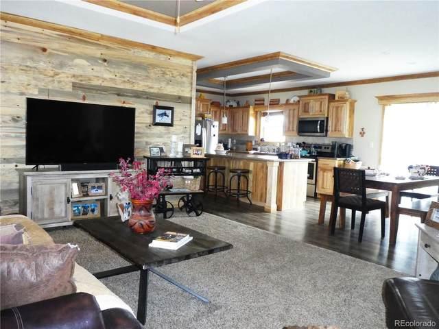 30916 County Road 356, Buena Vista, CO 81211 (#7649060) :: Wisdom Real Estate
