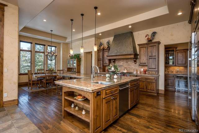 1125 Uinta Place, Larkspur, CO 80118 (MLS #7896654) :: 8z Real Estate