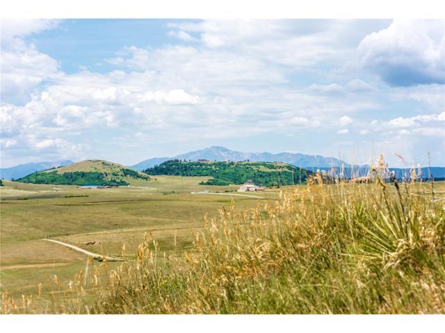 12345 Spring Valley Road, Larkspur, CO 80118 (MLS #7961459) :: 8z Real Estate