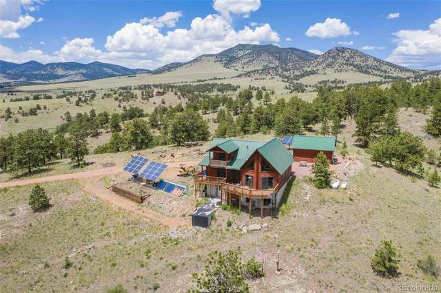 396 Eagle Nest Trail, Guffey, CO 80820 (#8182693) :: The Artisan Group at Keller Williams Premier Realty