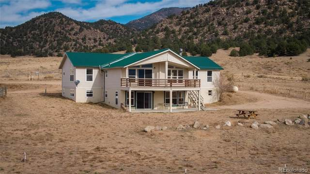 10140 County Road 45, Howard, CO 81233 (#8457098) :: The DeGrood Team
