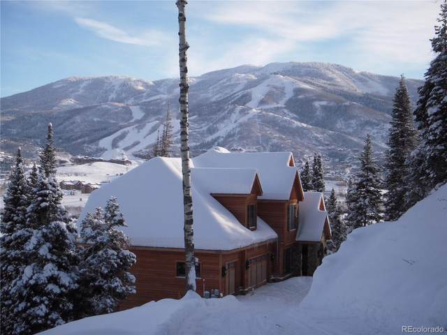 36889 Tree Haus Drive, Steamboat Springs, CO 80487 (#8458923) :: The Dixon Group