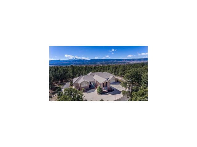 14595 Roller Coaster Road, Colorado Springs, CO 80921 (MLS #8773630) :: 8z Real Estate