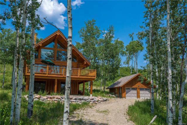 26680 Neptune Place, Clark, CO 80428 (MLS #8843708) :: 8z Real Estate