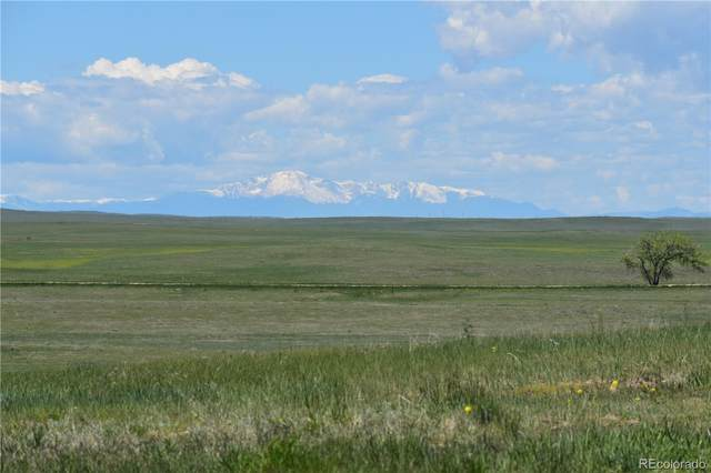 20100 County Road 161, Matheson, CO 80830 (MLS #8897533) :: 8z Real Estate
