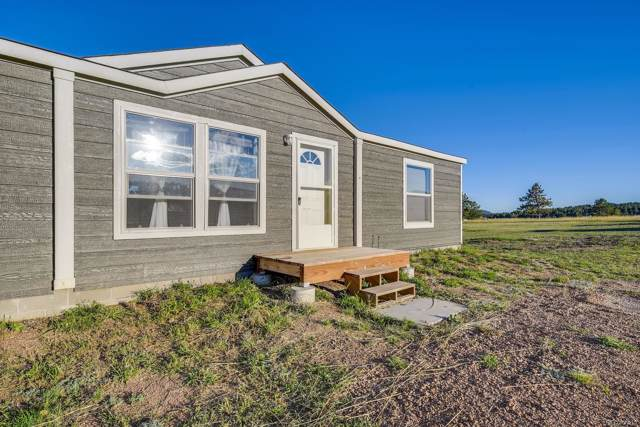287 Calle De La Nieva, Florissant, CO 80816 (MLS #9267149) :: 8z Real Estate