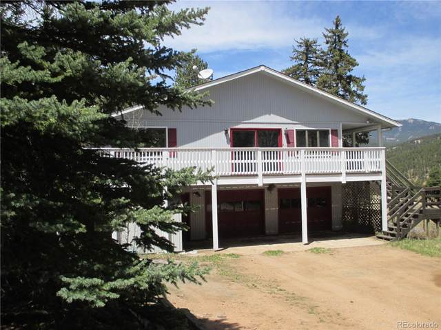 57 Spring Drive, Pine, CO 80470 (#9321549) :: The Margolis Team