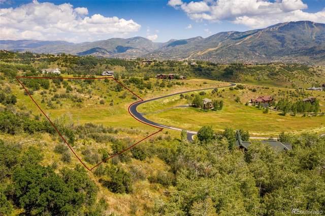 35965 Agate Creek Road, Steamboat Springs, CO 80487 (#S170412) :: Mile High Luxury Real Estate