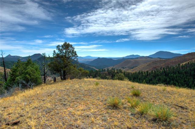 31266 Half Peak Trail, Pine, CO 80470 (#1858035) :: The Heyl Group at Keller Williams