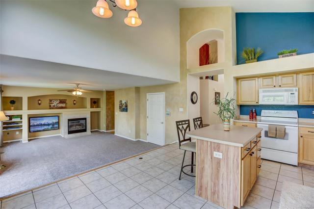 10458 Cheetah Winds, Littleton, CO 80124 (#2352527) :: The Griffith Home Team