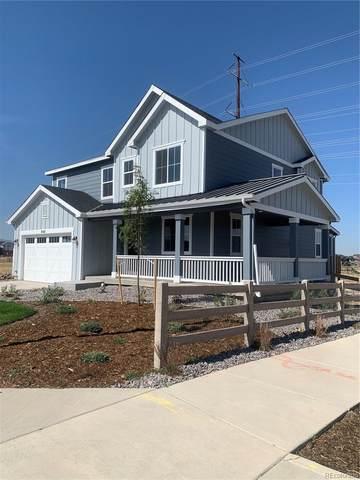 9187 Swan River Street, Littleton, CO 80125 (#3478841) :: Signature Realty, Inc.