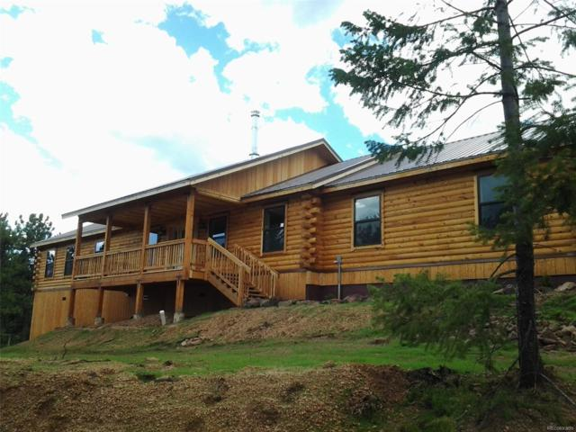 341 Double Tree Road, Bailey, CO 80421 (MLS #4013274) :: 8z Real Estate