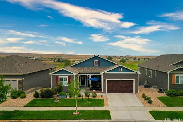 14251 W 91st Lane, Arvada, CO 80005 (#4197326) :: The DeGrood Team