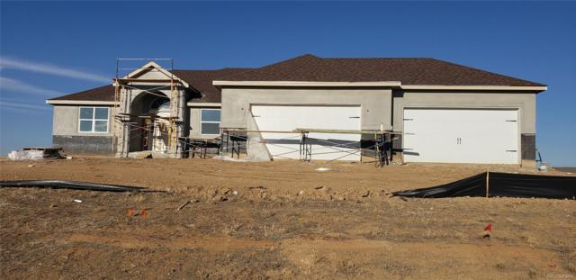 6965 E 162nd Avenue, Brighton, CO 80602 (MLS #4243961) :: Bliss Realty Group