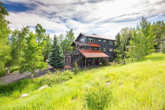 910 Mauna Kea Lane, Steamboat Springs, CO 80487 (MLS #4974644) :: 8z Real Estate