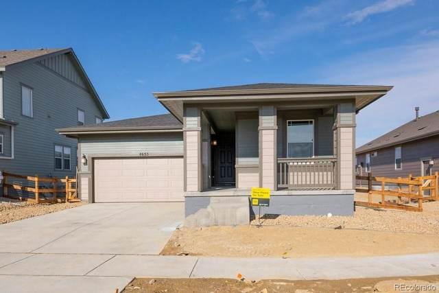 4653 N Bend Way, Firestone, CO 80504 (#5174410) :: Stephanie Fryncko | Keller Williams Integrity