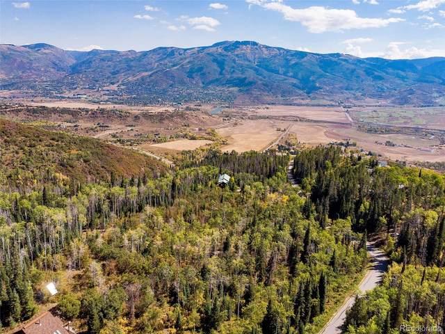 30450 Elk Lane, Steamboat Springs, CO 80487 (#5316047) :: The HomeSmiths Team - Keller Williams