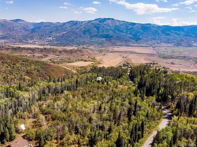 30450 Elk Lane, Steamboat Springs, CO 80487 (#5316047) :: Real Estate Professionals