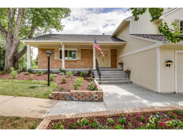 10646 W Devils Head, Littleton, CO 80127 (MLS #5441737) :: 8z Real Estate