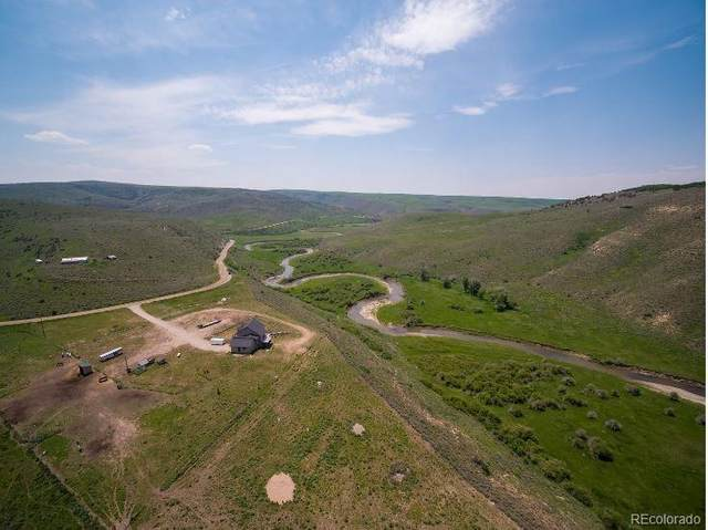 6890 County Road 74A, Hayden, CO 81639 (#5748639) :: The DeGrood Team
