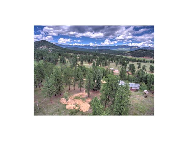 744 County Road 1034, Bailey, CO 80421 (MLS #6217020) :: 8z Real Estate